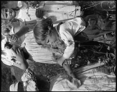 Gertrude Käsebier: Happy days, a portrait of the photographer's grandson Charles O'Malley