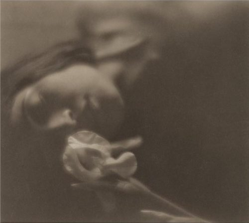 Edward Weston: The white Iris (Tina Modotti)