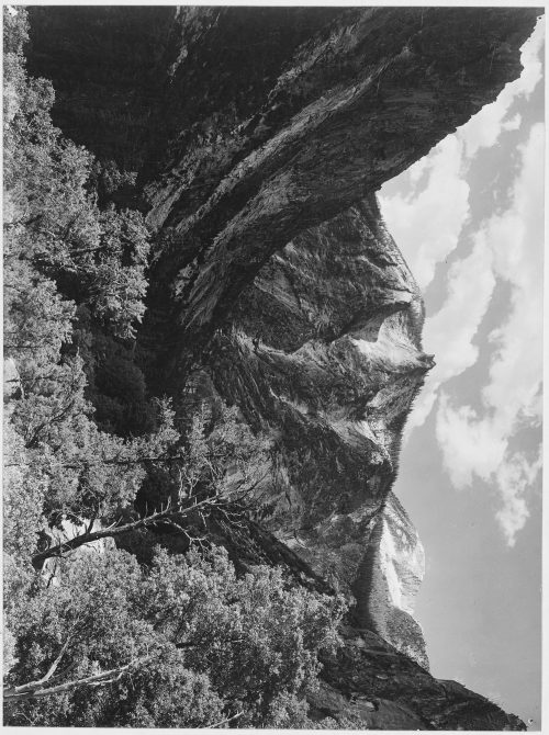 "Ansel Adams: ""Paradise Valley, Kings River Canyon (Proposed as a national park),"" California, 1936"