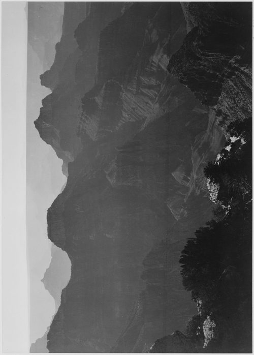 "Ansel Adams: View with shrub detail in foreground, ""Grand Canyon National Park,"" Arizona"