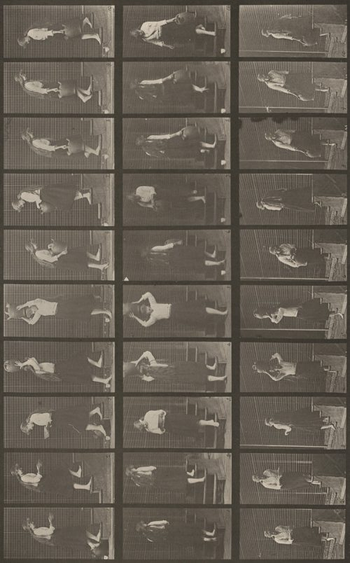Eadweard Muybridge: Plate Number 504. Ascending and descending stairs, 1887