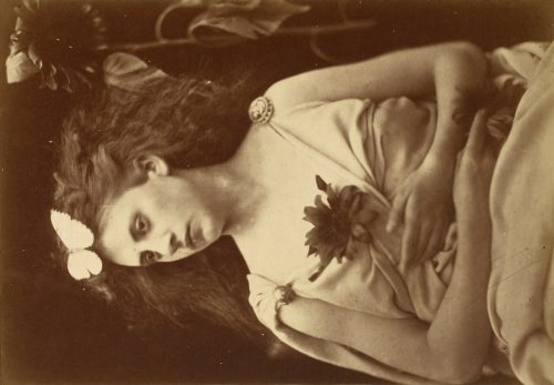 Julia Margaret Cameron: The Sunflower,  1866-1870