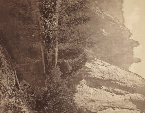 Eadweard Muybridge:  Cathedral Spires, Valley of the Yosemite 1872