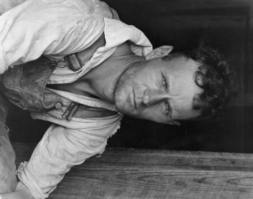 Walker Evans: Floyd Burroughs, A Cotton Sharecropper, Hale County, Alabama, 1936
