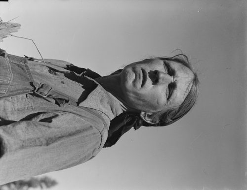 Dorothea Lange: Drought refugee from Oklahoma in California