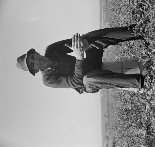 Dorothea Lange: Strawberry grower from Oklahoma near Judsonia forced to join the migratory workers in California for the season because the 1936 drought caused a shortage of plants